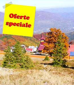 Oferte speciale Vila Alpin